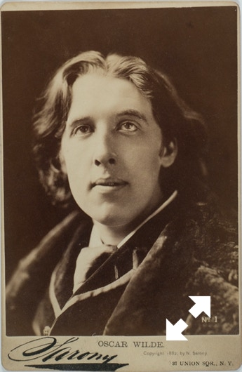 Oscar Wilde in an 1882 photograph taken by Napoleon Sarony.